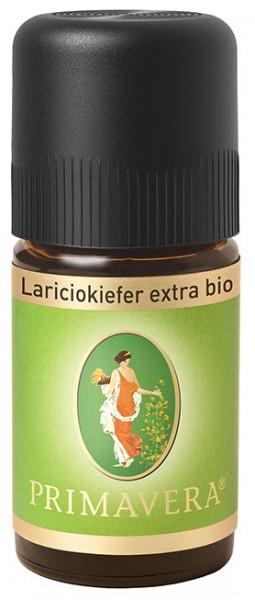 Ätherisches Öl - Lariciokiefer extra *bio