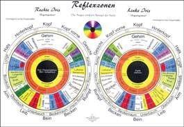 Lehrtafel - Iris-Reflexzonen