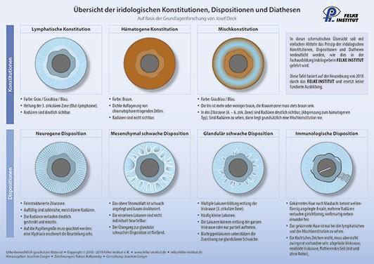 Lehrtafel - Übersicht der iridologischen Konstitutionen, Dispositionen und Diathesen