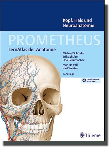 Prometheus - Kopf, Hals und Neuroanatomie
