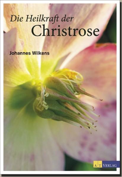 Die Heilkraft der Christrose