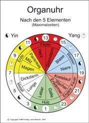 Lehrtafel - Organuhr - A5