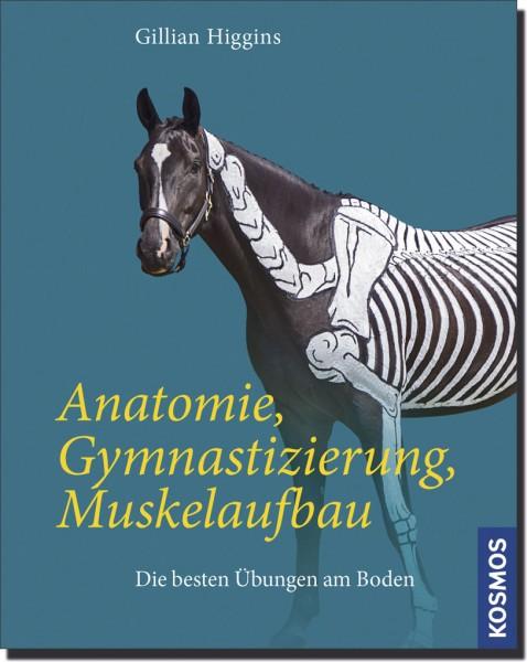 Anatomie, Gymnastizierung, Muskelaufbau - Buch