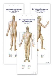Lehrtafel - Akupunkturpunkte-Faltposter-Set