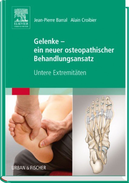 Gelenke - ein neuer osteopathischer Behandlungsansatz - Untere Extremitäten