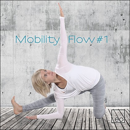 Mobility Flow #1 - Musik-CD