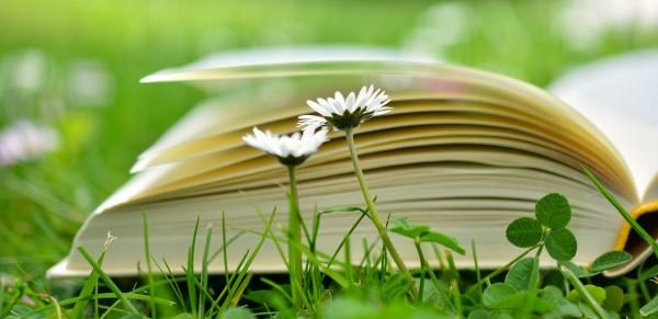 book-2304389_1280